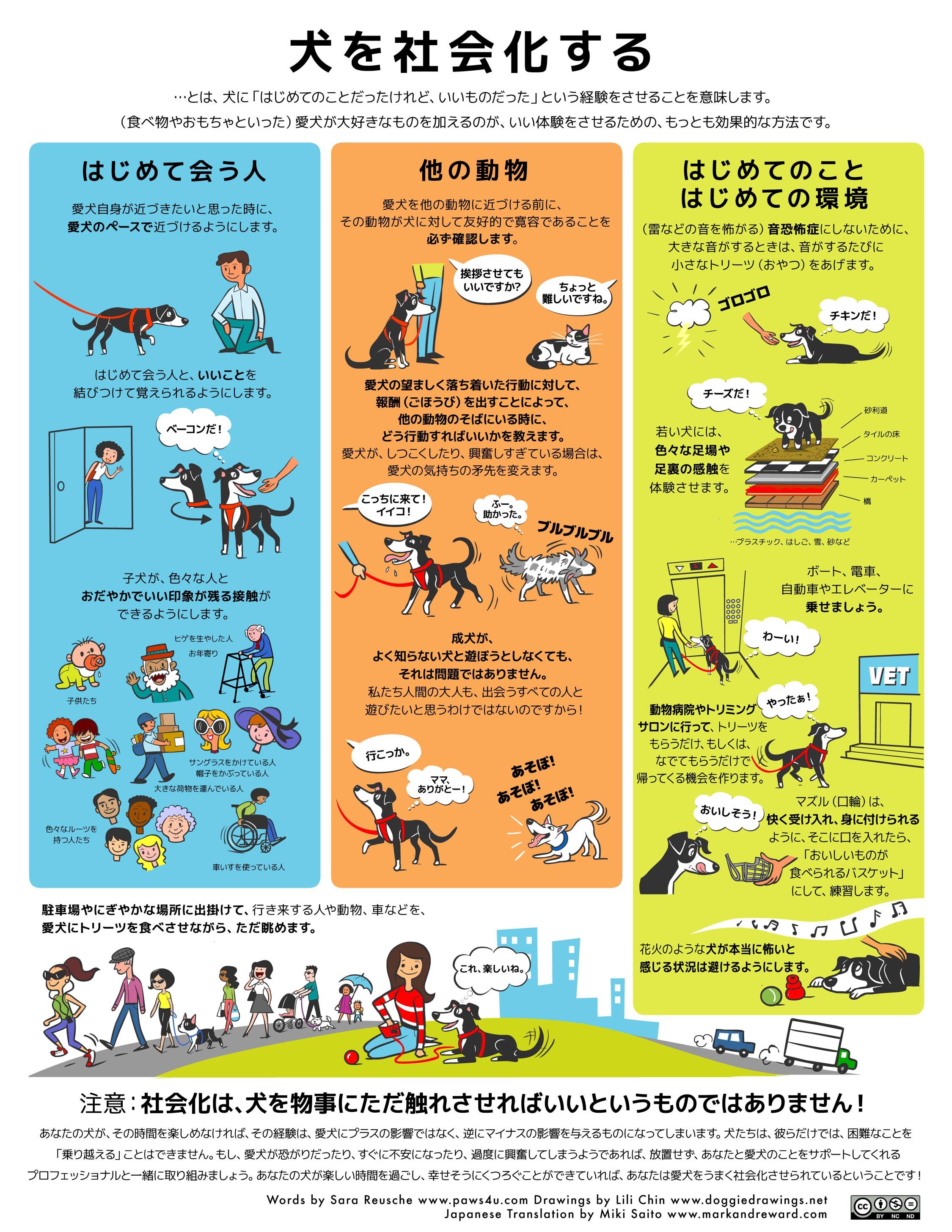 """""""犬の社会化"""""""